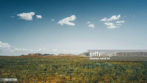 aerial shot looking over remote bushland with a mountainous backdrop, western australia - 荒野 ストックフォトと画像