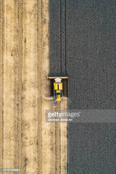 aerial shot of a combine harvester, united kingdom - in a row stock pictures, royalty-free photos & images