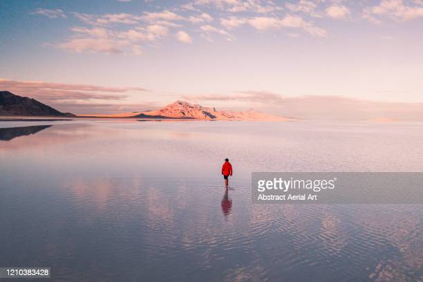 aerial shot of a person walking across the flooded bonneville salt flats, utah, united states of america - bonneville salt flats stock pictures, royalty-free photos & images