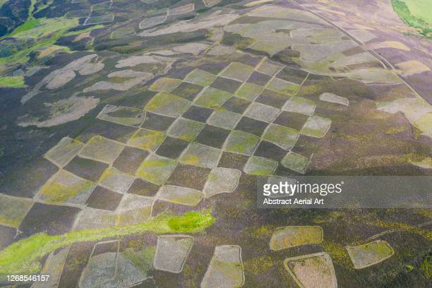 aerial shot of a rural summer scene, scotland, united kingdom - awe stock pictures, royalty-free photos & images