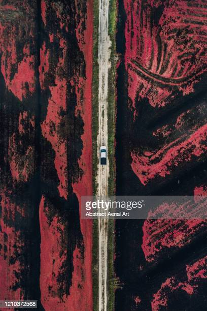 aerial shot of a truck parked on a dirt track between two cranberry bogs, massachusetts, united states of america - vertical stock pictures, royalty-free photos & images