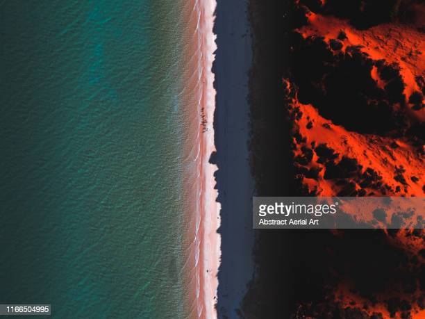 aerial shot of cape peron at sunset, shark bay, australia - australia foto e immagini stock