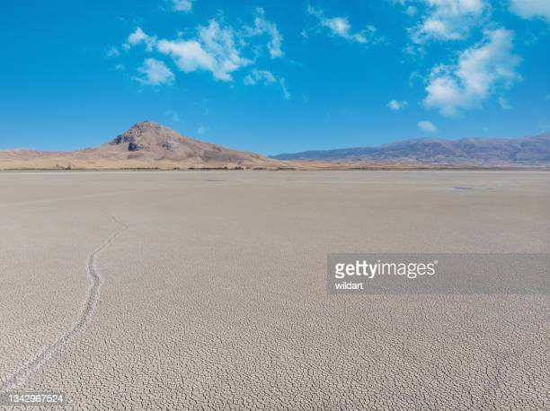 aerial shot of dried, cracked, dry, drought lakebed surface - greenpeace stock pictures, royalty-free photos & images