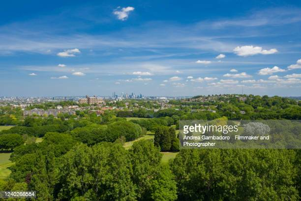 aerial shot of london - tree stock pictures, royalty-free photos & images