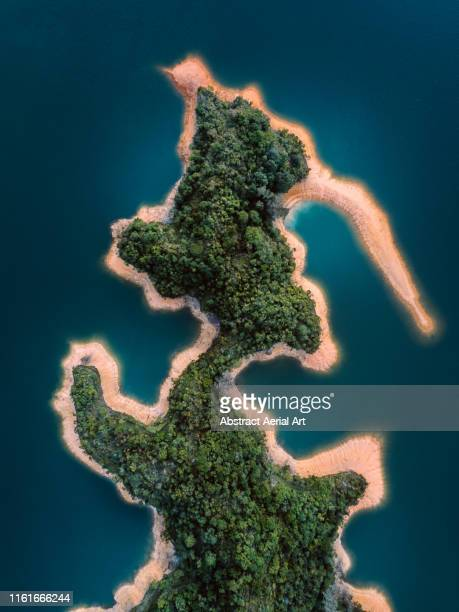 aerial shot of unique shaped island with a forest, hong kong - island stock pictures, royalty-free photos & images