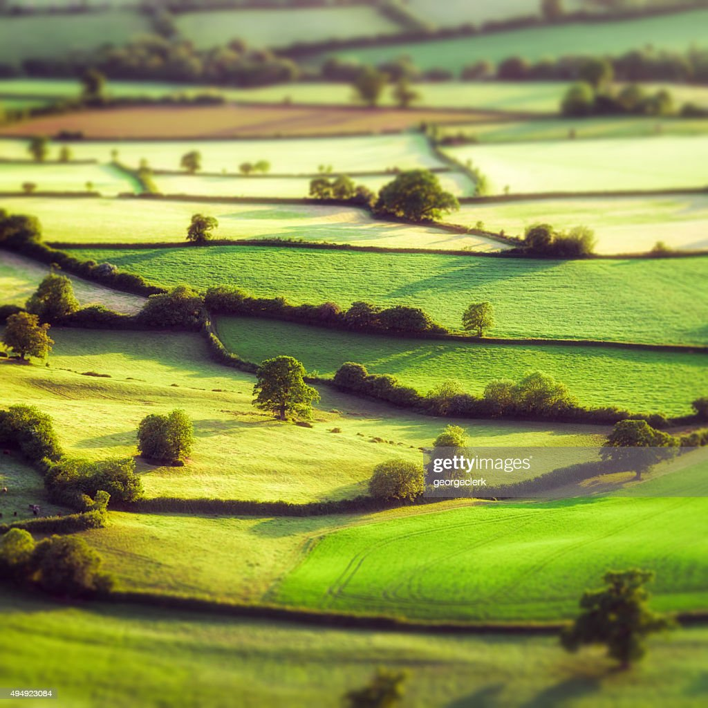 Aerial tilt-shift view of pastoral English fields : Stock Photo