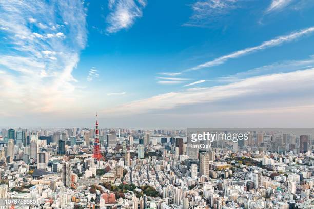 aerial tokyo city view with tokyo tower, minato, tokyo, japan. (day) - politics and government stockfoto's en -beelden