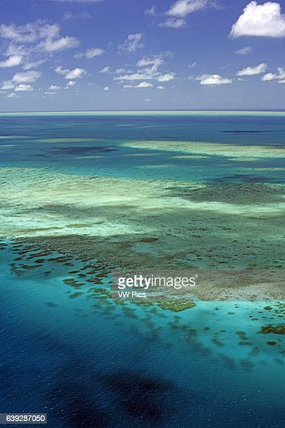 Aerial Tongue Reef Great Barrier Reef Queensland Australia