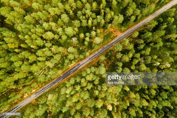 aerial top down view of a road in a forest in sweden - the slants stock pictures, royalty-free photos & images