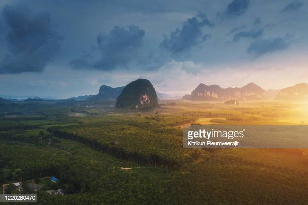 aerial top view of forest river and moutain landscapes - river amazon stock pictures, royalty-free photos & images