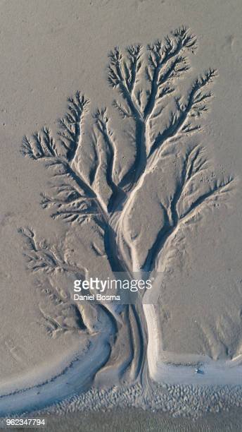 Aerial view above Schiermonnikoog of amazing natural shapes and textures created by tidal changes