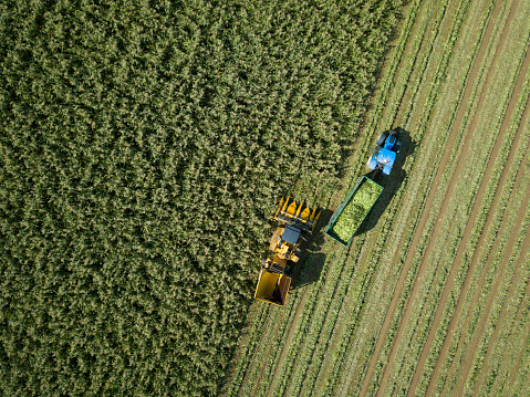 Aerial view above tractor and harvester in a field - gettyimageskorea