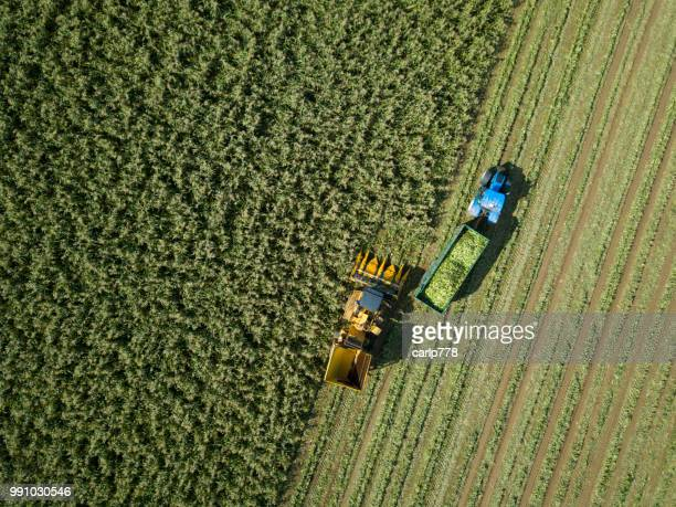 aerial view above tractor and harvester in a field - agriculture stock pictures, royalty-free photos & images