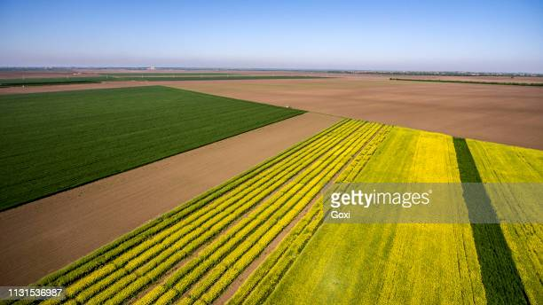 aerial view agricultural field - victoria australia stock pictures, royalty-free photos & images