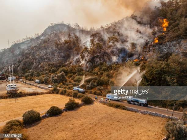 aerial view firefighter fighting forest fire - forest fire stock pictures, royalty-free photos & images