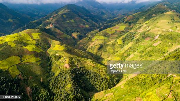 aerial view from drone of green rice terrace cultivated field on the mountain range at mu cang chai, vietnam - impossiable stock pictures, royalty-free photos & images
