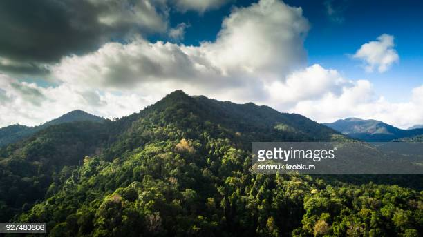 Aerial view green forest in Koh Chang;Thailand