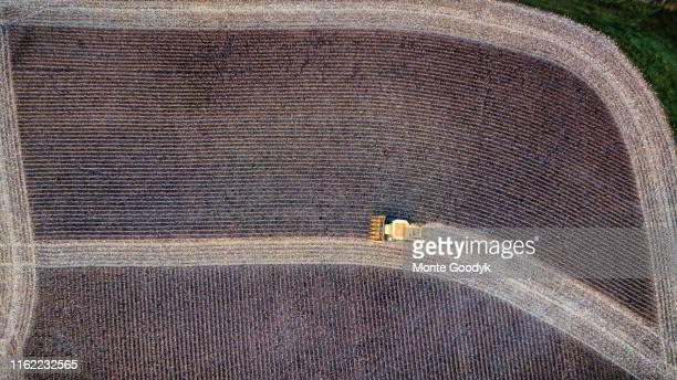 aerial view midwest crop harvest - región central de eeuu fotografías e imágenes de stock