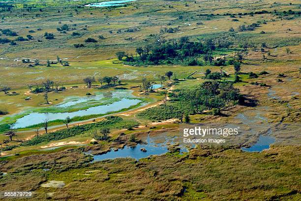 Aerial View Moremi National Park Botswana