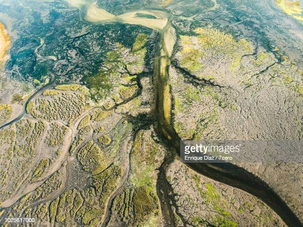 aerial view o grove wetlands, galicia 3 - grove_(nature) stock pictures, royalty-free photos & images