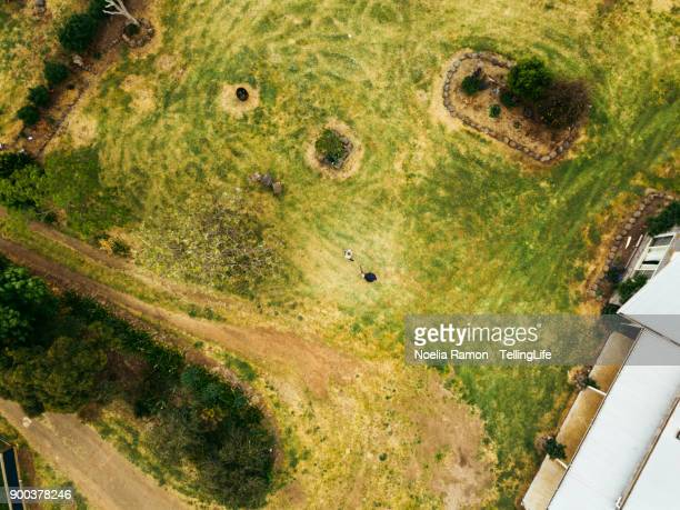 Aerial view of 2 kids playing with wooden swords at their family farm