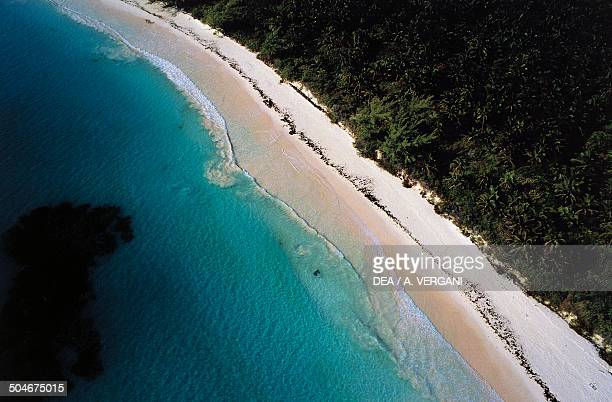 Aerial view of a beach Harbour Island Eleuthera The Bahamas