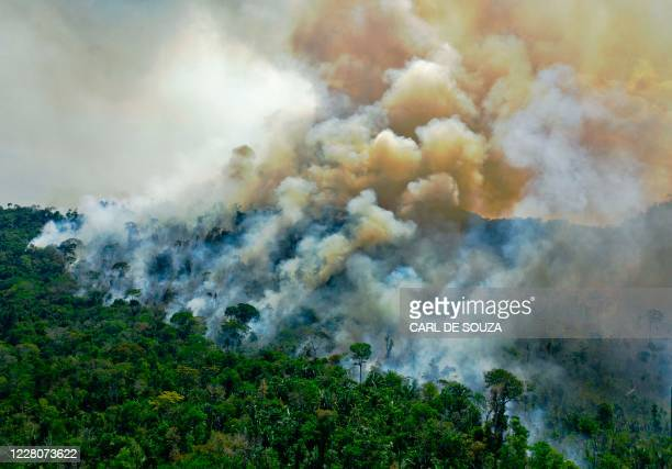 Aerial view of a burning area of Amazon rainforest reserve, south of Novo Progresso in Para state, on August 16, 2020.