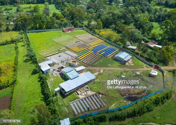 Aerial view of a coffee farm Oromia Shishinda Ethiopia on October 27 2018 in Shishinda Ethiopia