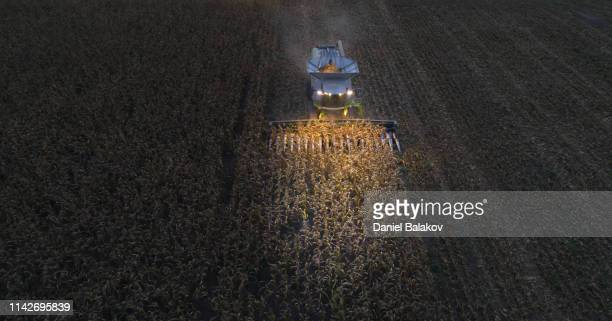 Aerial View of a Combine Harvester Harvesting the Agricultiral Fierld After Sunset. Summertime. Agricultural Equipment in Cultivated Land. Nighttime. Working Late.