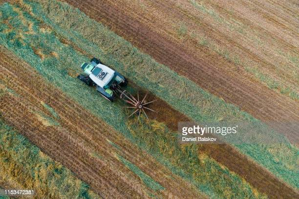 aerial view of a combine harvester harvesting the agricultiral fierld at sunset. summertime. agricultural equipment in cultivated land - harvest festival stock pictures, royalty-free photos & images