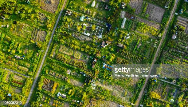 aerial view of a community garden in helsinki - self sufficiency stock pictures, royalty-free photos & images