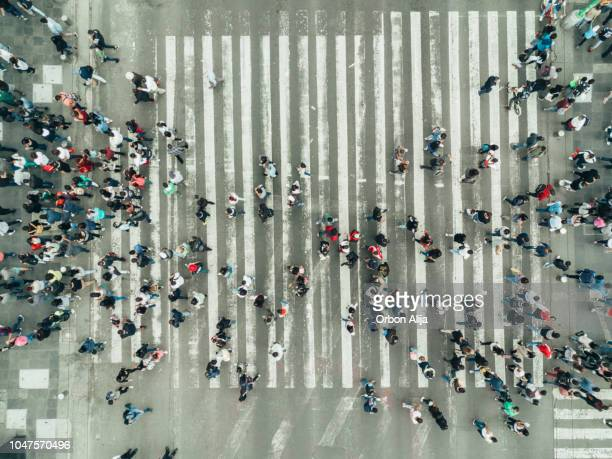 aerial view of a crossing in mexico city - zebra crossing stock pictures, royalty-free photos & images
