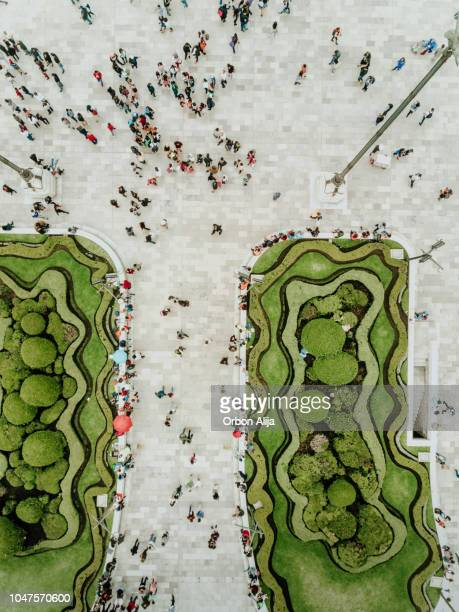aerial view of a crossing in mexico city - cityscape stock pictures, royalty-free photos & images