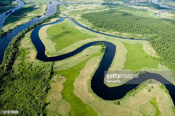 Vue aérienne d'un paysage verdoyant
