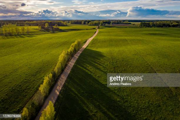 aerial view of a green vista and boulevard in the countryside during sunset - estonia stock pictures, royalty-free photos & images