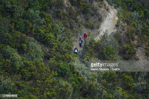 aerial view of a group of hikers on the volcanic craters of mount longonot, rift valley - kenya stock pictures, royalty-free photos & images