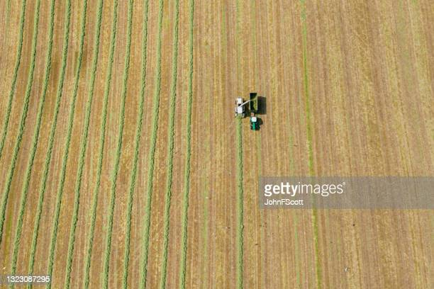 aerial view of a harvester collecting cut grass - johnfscott stock pictures, royalty-free photos & images