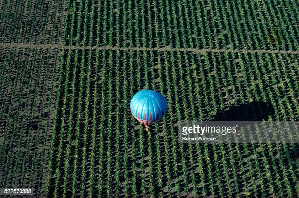 Aerial view of a hot air balloon flying over Napa Valley, CA, United States, circa 1970s.