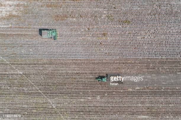 aerial view of a large green cotton harvester - cotton harvest stock pictures, royalty-free photos & images