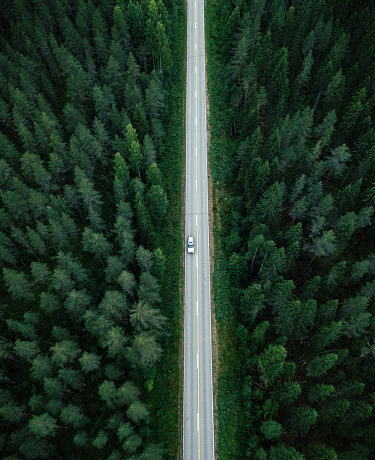 Aerial view of a long straight of a country road in the middle of a forest in Finland - gettyimageskorea