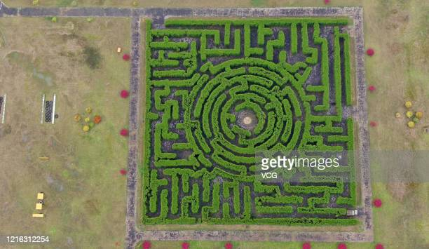 Aerial view of a maze at Rugao Jindao ecological park on April 1, 2020 in Nantong, Jiangsu Province of China.