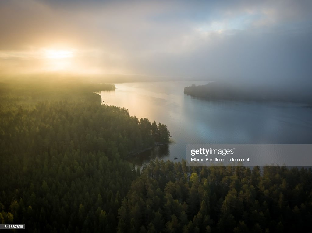 Aerial view of a misty forest & lake landscape in Finland during sunrise early on a summer morning : Stock Photo