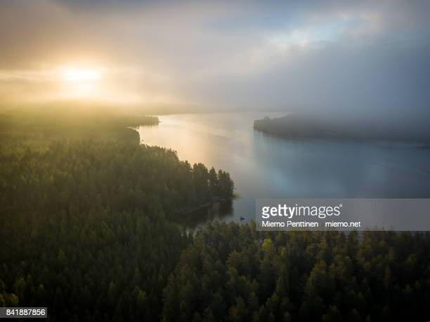 Aerial view of a misty forest & lake landscape in Finland during sunrise early on a summer morning