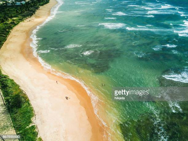 Aerial View of a Paradise Beach in Brazil