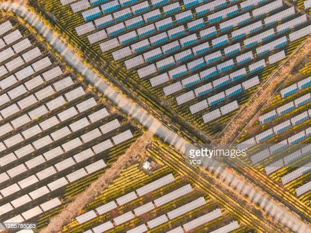 Aerial view of a photovoltaic tea garden on November 15, 2020 in Shengzhou, Zhejiang Province of China.