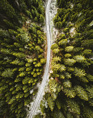 aerial view of a pine forest in switzerland