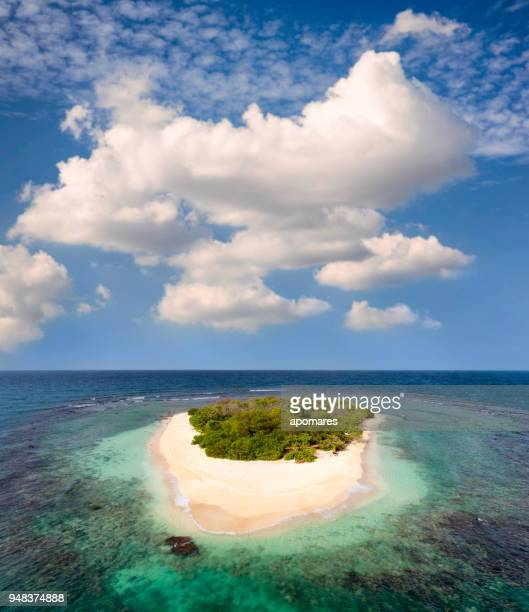 Aerial view of a pristine lonely tropical Caribbean cay with white sand coral reef and coconut trees.