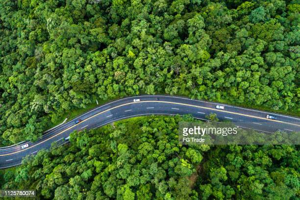 aerial view of a road on a forest - road stock pictures, royalty-free photos & images