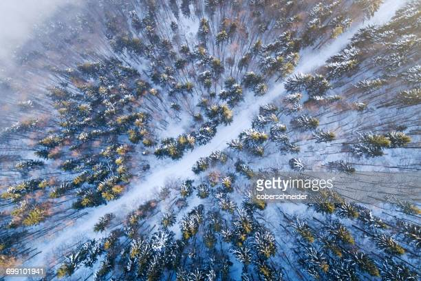 Aerial view of a road winding through a winter landscape, Salzburg, Austria
