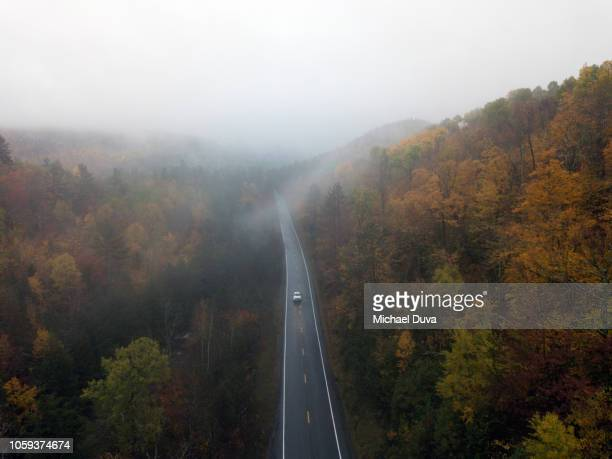 Aerial view of a road with autumn leaves changing